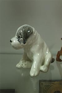 собака 7